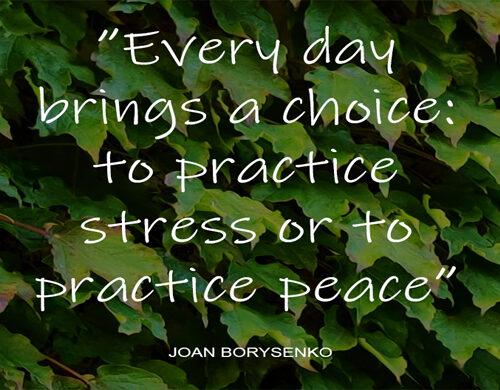 Stress eller ro